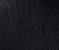 Lexis Sta-Kleen Black Fabric